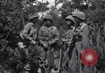 Image of Japanese-American soldiers Italy, 1944, second 7 stock footage video 65675030358