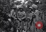 Image of Japanese-American soldiers Italy, 1944, second 8 stock footage video 65675030358