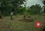 Image of clearing brush Ankhe South Vietnam, 1965, second 7 stock footage video 65675030389