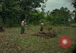 Image of clearing brush Ankhe South Vietnam, 1965, second 8 stock footage video 65675030389