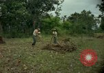 Image of clearing brush Ankhe South Vietnam, 1965, second 9 stock footage video 65675030389