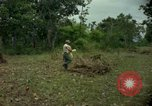 Image of clearing brush Ankhe South Vietnam, 1965, second 11 stock footage video 65675030389