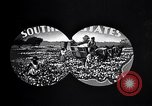 Image of cotton United States USA, 1928, second 4 stock footage video 65675030435