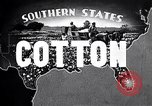 Image of cotton United States USA, 1928, second 11 stock footage video 65675030435