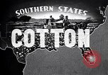 Image of cotton United States USA, 1928, second 12 stock footage video 65675030435