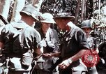 Image of 199th Light Infantry Brigade Vietnam, 1968, second 3 stock footage video 65675030469