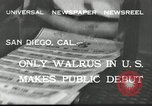 Image of walrus from Alaska San Diego California USA, 1932, second 6 stock footage video 65675030533