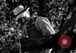 Image of farmer farming Saint Clairsville Ohio USA, 1940, second 6 stock footage video 65675030601