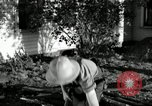 Image of farmer farming Saint Clairsville Ohio USA, 1940, second 11 stock footage video 65675030601