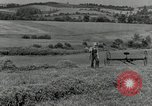 Image of farmer cutting old corn stalks Saint Clairsville Ohio USA, 1940, second 4 stock footage video 65675030603
