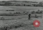 Image of farmer cutting old corn stalks Saint Clairsville Ohio USA, 1940, second 6 stock footage video 65675030603