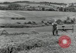 Image of farmer cutting old corn stalks Saint Clairsville Ohio USA, 1940, second 7 stock footage video 65675030603