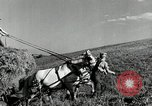 Image of Truck loaded with hay Saint Clairsville Ohio USA, 1940, second 5 stock footage video 65675030604