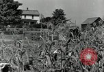 Image of farmers learn about REA Saint Clairsville Ohio USA, 1940, second 10 stock footage video 65675030606