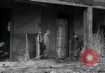 Image of Moonshine still Frazer Pennsylvania USA, 1936, second 12 stock footage video 65675030778