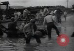 Image of 24th infantry division South Korea, 1950, second 11 stock footage video 65675030821