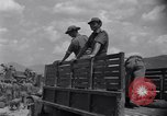 Image of Korean War Taegu Korea, 1950, second 10 stock footage video 65675030827