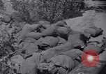 Image of Korean War Taegu Korea, 1950, second 12 stock footage video 65675030827