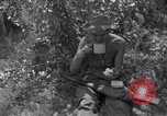 Image of Korean War Taegu Korea, 1950, second 5 stock footage video 65675030828