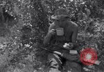 Image of Korean War Taegu Korea, 1950, second 6 stock footage video 65675030828