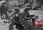 Image of Korean War Taegu Korea, 1950, second 9 stock footage video 65675030828