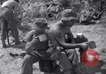 Image of Korean War Taegu Korea, 1950, second 10 stock footage video 65675030828