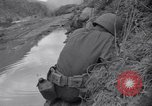 Image of Korean War Chilgok South Korea, 1950, second 8 stock footage video 65675030833