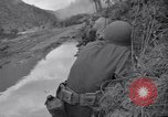 Image of Korean War Chilgok South Korea, 1950, second 11 stock footage video 65675030833