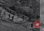 Image of US infantry occupies Avellino Avellino Italy, 1943, second 1 stock footage video 65675030878