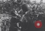 Image of German 20mm Flak gun Salerno Italy, 1943, second 2 stock footage video 65675030907
