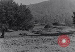 Image of road side camping United States USA, 1917, second 2 stock footage video 65675031042