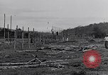 Image of Malayan settlement Malaya, 1959, second 5 stock footage video 65675031124