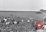 Image of grape harvest France, 1931, second 5 stock footage video 65675031149