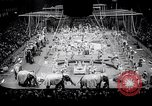 Image of circus wedding New York United States USA, 1966, second 9 stock footage video 65675031162
