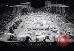 Image of circus wedding New York United States USA, 1966, second 12 stock footage video 65675031162
