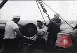 Image of United States Coast Guard North Atlantic Ocean, 1944, second 8 stock footage video 65675031168