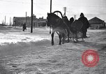 Image of Italian troops Russia, 1942, second 7 stock footage video 65675031298