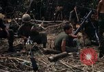 Image of United States Marines Vietnam, 1966, second 4 stock footage video 65675031455