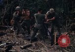 Image of United States Marines Vietnam, 1966, second 12 stock footage video 65675031455