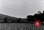 Image of Negro people South Carolina United States USA, 1936, second 10 stock footage video 65675031570