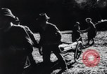 Image of Agricultural practices Germany, 1944, second 4 stock footage video 65675031597