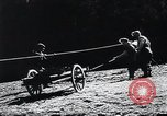 Image of Agricultural practices Germany, 1944, second 11 stock footage video 65675031597