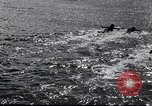 Image of surfboards United States USA, 1920, second 10 stock footage video 65675031733