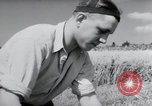 Image of German farmers harvesting oats Wiesbaden Germany, 1954, second 10 stock footage video 65675031781