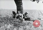 Image of German farmers Wiesbaden Germany, 1954, second 8 stock footage video 65675031787