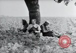 Image of German farmers Wiesbaden Germany, 1954, second 10 stock footage video 65675031787