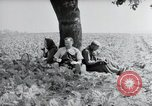 Image of German farmers Wiesbaden Germany, 1954, second 12 stock footage video 65675031787