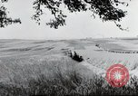 Image of German farmers Wiesbaden Germany, 1954, second 9 stock footage video 65675031793