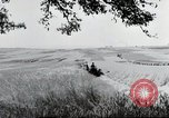 Image of German farmers Wiesbaden Germany, 1954, second 10 stock footage video 65675031793