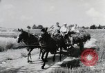 Image of German farmers Wiesbaden Germany, 1954, second 1 stock footage video 65675031796